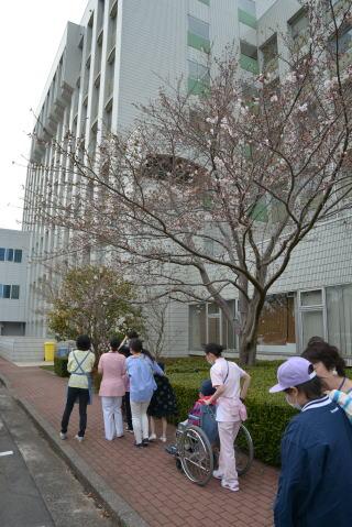 4月5日 こども病院 お散歩